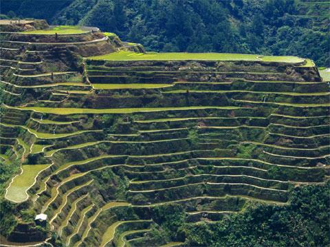 菲律宾伊富高的巴拿威梯田